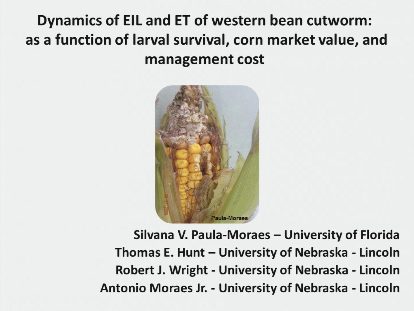 Western Bean Cutworm slideshow by Silvana Paula-Moreas