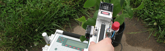 Photosynthesis monitor