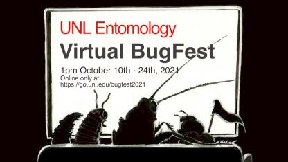 BugFest logo for 2021